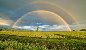 colori-dell-arcobaleno